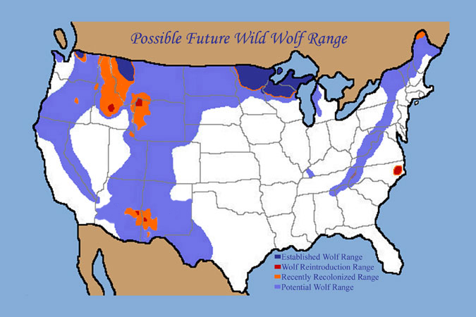 Possible Wild Wolf Range if the Wild Lands Project happens
